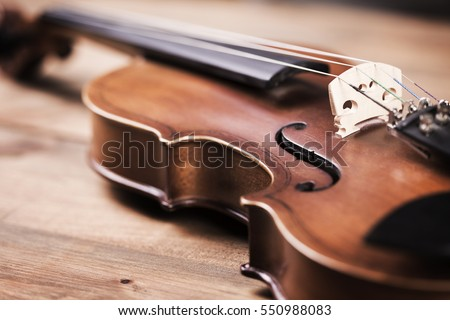 Close view of a violin strings and bridge Сток-фото ©