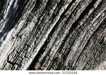 Close view of a weathered wood background - stock photo