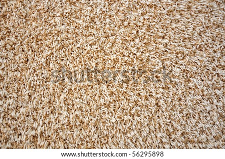 Close view of carpet texture - abstract background