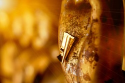 Closeup and crop a gold leaf on hand of old and golden Buddha statue on blurred golden background