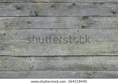 Closeup background texture photo of rustic weathered barn wood with visible shades of green