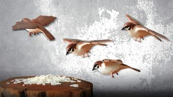 Closeup Bird Flying With Rice, Old Wall Background, Flying Bird on Background, Miniature Bird Figure, Front View, Empty Space For Text.