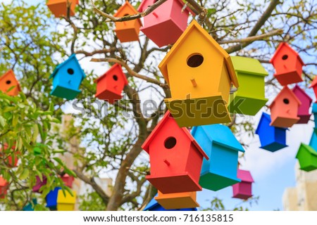 Closeup birdhouses on a mandarin tree at city