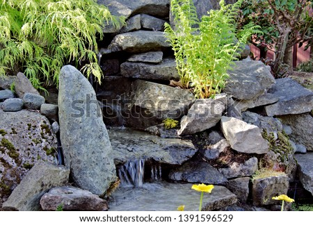 Closeup capture of flowing water cascading over the sandstone ledges of a waterfall part of garden landscape design built with sandstone rocks and granite boulders fresh green ferns and maple foliage