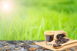 Closeup cup of espresso coffee and roasted coffee beans on green grass blurred greenery background in garden, Green nature background, Nature spring grass background texture, Copy space.