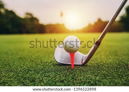 closeup golf club and golf ball on green grass wiht sunset
