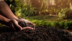 closeup hand of person holding abundance soil with young plant. Concept green world earth day
