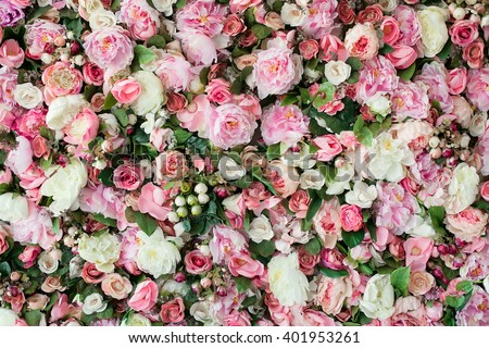 Closeup image of beautiful flowers wall background with amazing red and white roses. Top view