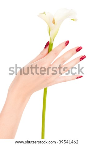 Closeup image of beautiful nails and fingers with flower over isolated white