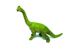 Closeup Image of Brachiosaurus Plastic Dinosaurs Toy Isolated on White Background. Age of Extinction.