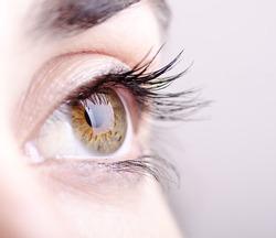 Closeup image of green and brown eye