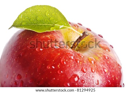 closeup isolated juicy red apple