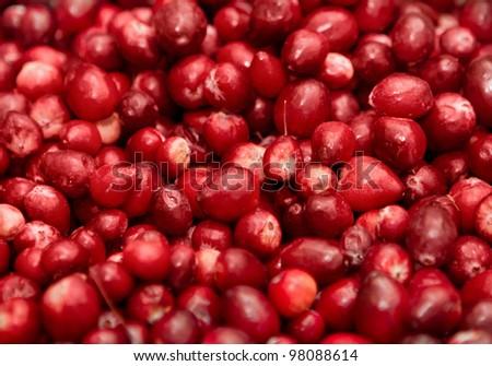 closeup macro of red berries in a big pile