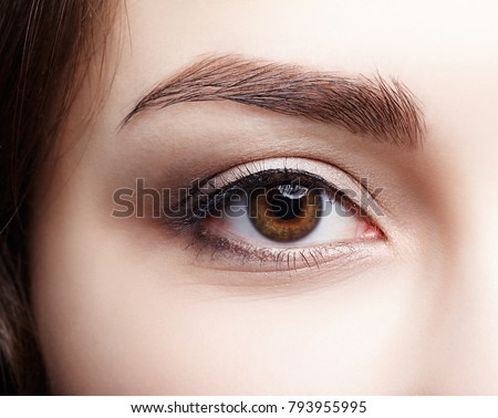 Closeup macro shot of  human brown female eye. Woman with natural nude face beauty makeup. Girl with perfect skin
