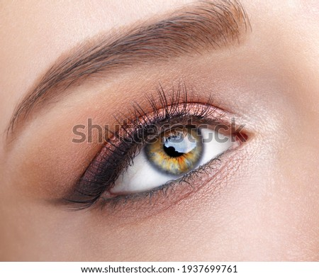 Closeup macro shot of  human female eye. Woman with natural evening vogue eye beauty makeup. Girl with perfect skin and  pink  eyes shadows.