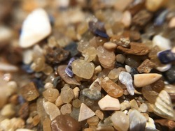 Closeup macro view of beach sand with stones and shells