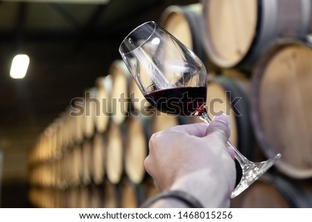 Closeup male hand with glass of red wine on background of cellar with wooden oak barrels stacked in straight rows in order in old winery, vault. Concept professional degustation, winelover, sommelier  Сток-фото ©