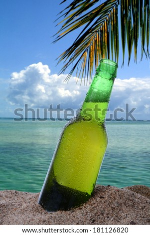 Closeup of a beer bottle stuck in the in the sand on a tropical beach. The ocean clouds and a single palm frond fill the background. - stock photo