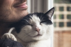Closeup of a black and white cat cuddled by a beard man. Love relationship between human and cat