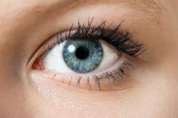 Closeup of a blue eye