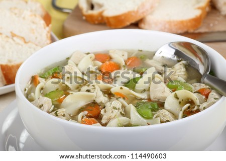 Closeup of a bowl of chicken and noodle soup