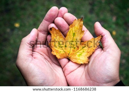 closeup of a caucasian man with a dry leaf in his hands