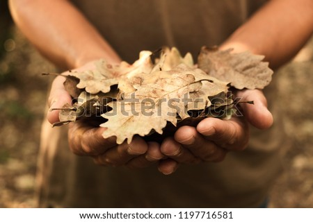 closeup of a caucasian man with a pile of dry leaves in his hands on the forest