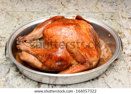 Closeup of a cooked Thanksgiving turkey in a roasting pan on a kitchen counter. The turkey has just come out of the oven and is ready to eat. Horizontal format.