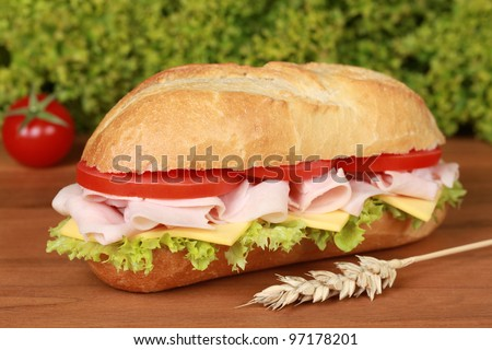 Closeup of a fresh sandwich with ham, cheese and lettuce