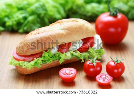 Closeup of a fresh sandwich with mozzarella and tomatoes
