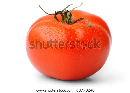 closeup of a fresh tomato with water drops isolated on white