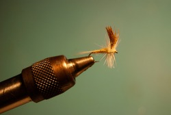 Closeup of a freshwater dryfly in a vice with a neutral background