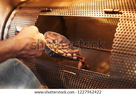 Closeup of a hands of worker in an artisanal chocolate making factory using a scoop to pour cocoa beans into a roasting machine