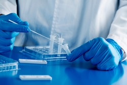 closeup of a healthcare worker, wearing blue surgical gloves, put the sample of a nasopharyngeal swab in contact with the reactant, before to insert it into the covid-19 antigen diagnostic test device