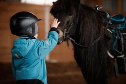 Closeup of a kid stroking a horse. The boy is preparing to learn pony riding in the cold season. Hippotherapy for the development of the baby. Child in a warm suit and helmet for safety. Safety first