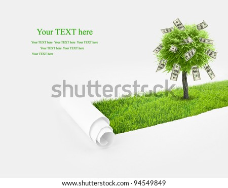 Closeup of a paper hole with money tree and grass background