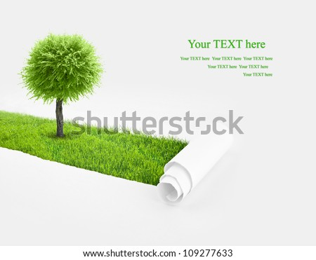 Closeup of a paper hole with tree and grass background