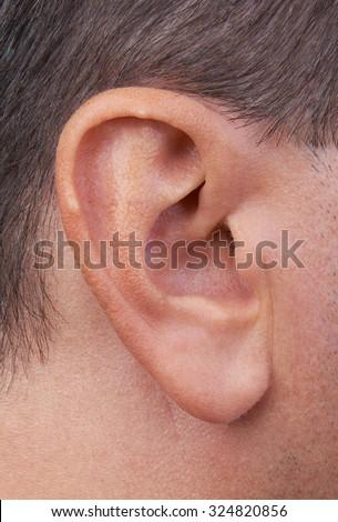 Closeup of a perfect human ear