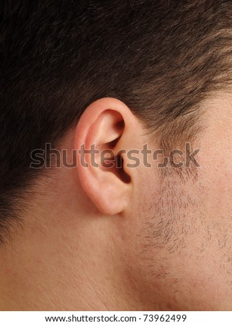 Closeup of a perfect human ear