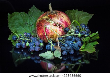 Closeup of a pomegranate and wild grapes