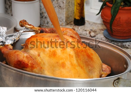 Closeup of a Thanksgiving Turkey being basted with its own juices. Horizontal format.