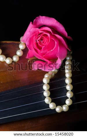 Closeup of a vibrant pink rose with dew drops, a string of pearls, and an old violin on black background