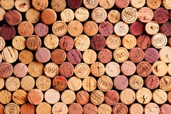 Closeup of a wall of used wine corks. A random selection of used wine corks, some with vintage years. Horizontal format that fills the frame.