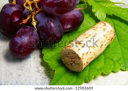 Closeup of a wine cork, grapevine and grapes