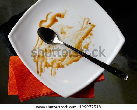 Closeup of an empty plate after the dessert was finished