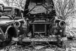 Closeup of an old abandoned rusty black cab engulfed by nature.
