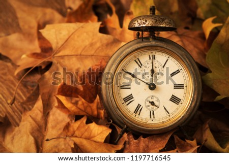 closeup of an old and rusty alarm clock surrounded by dry leaves, depicting the end of the summer time and the beginning of autumn #1197716545