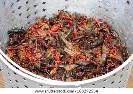 Closeup Of Basket Of Live Louisiana Crawfish