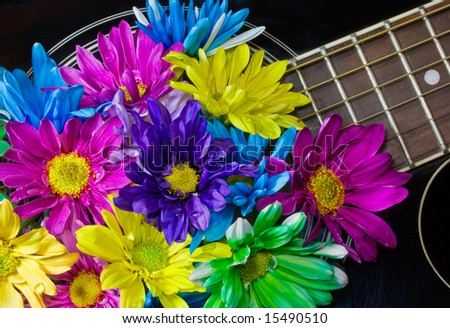 closeup of black acoustic guitar filled with multi-colored daisies (colorful notes)
