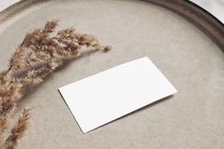 Closeup of blank business card mockup. Dry grass on beige ceramics plate. Fall and Thanksgiving concept. Autumn styled stock still life photo. Selective focus, no people.